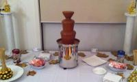 Amelia's birthday guests were raving about the chocolate from the chocolate fountain.