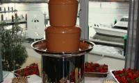 A chocolate fountain buffet awaits the staff at the ADAPS Christmas Party.