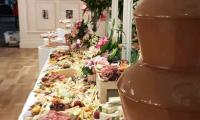 Can it get any better than this grazing table with a chocolate fountain.