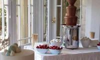 Any special event is special when you add a chocolate fountain.